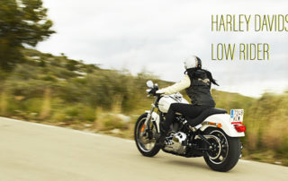 HARLEY DAVIDSON LOW RIDER, free motorcycle style, low rider, biker girl