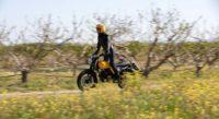 macbor eight mile 125cc, moto 125cc, scrambler, scrambler 125cc, motos bordoy, moto para chicas, moto de iniciación